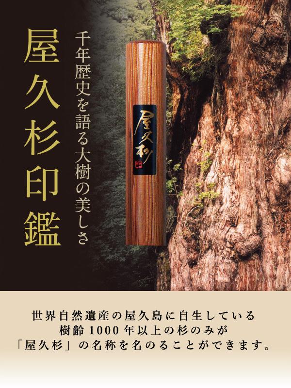 屋久杉印鑑トップ